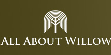All About Willow logo